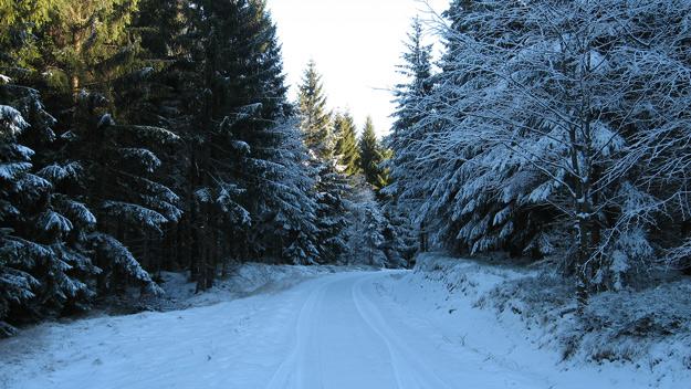 Cesta na Brdo